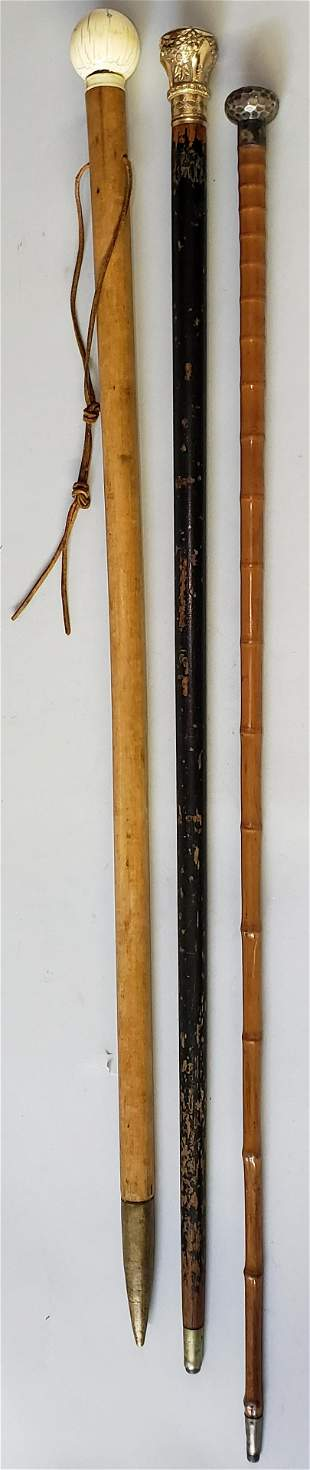 Collection of Three 19th Century Walking Sticks