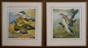 Large Collection of Lynn Bogue Hunt Prints.