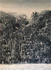 Tomas Sanchez(Cuban Art) born 1948