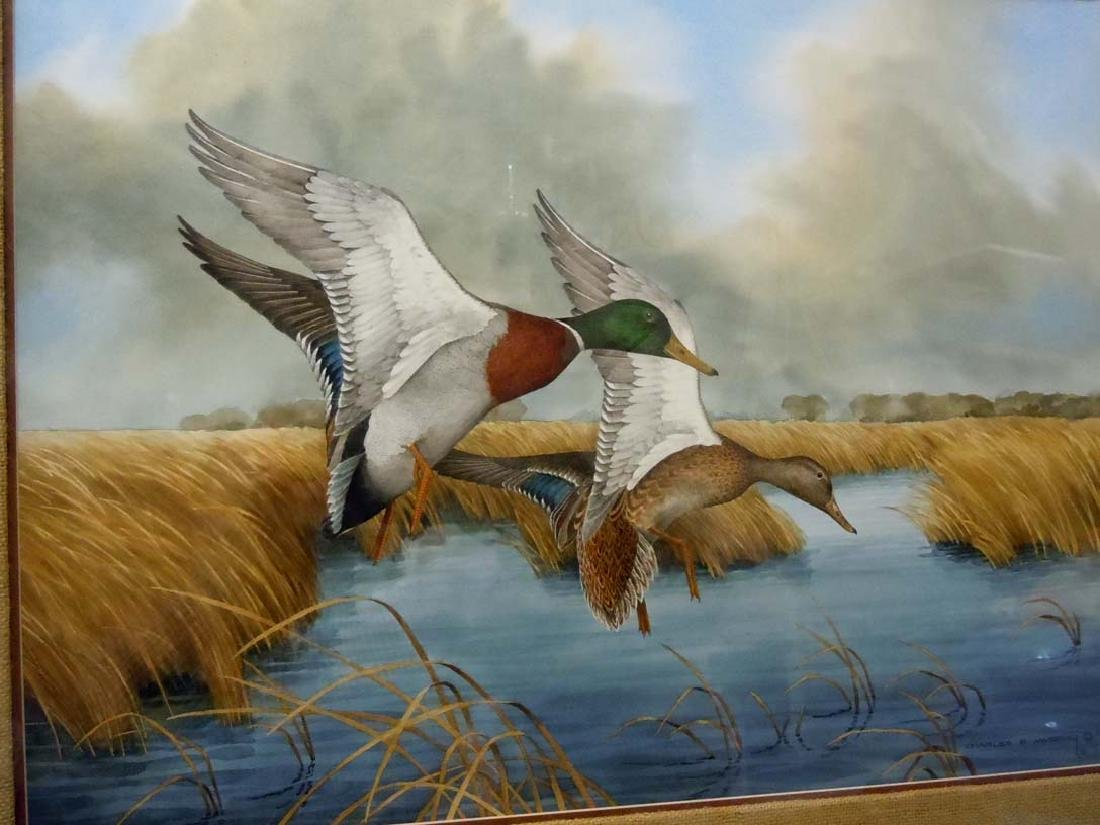Charles E. Murphy Mallard Ducks Smooth Landing