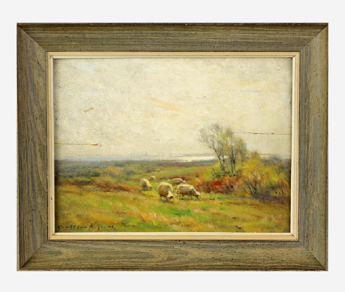 Carleton Wiggins Off Saybrook Grazing Sheep Landscape