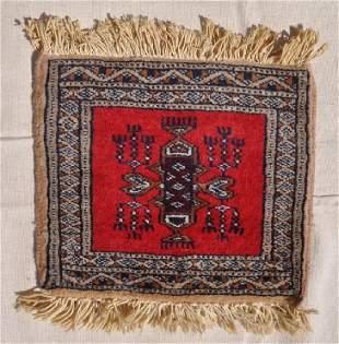 Small Pakistani Wool Pile 10x115