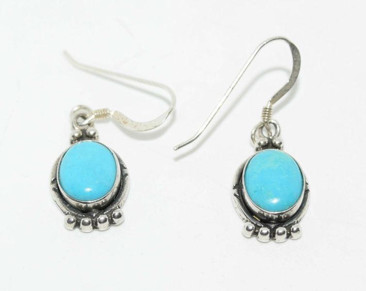 Sterling Turquoise Framed Hook Earrings