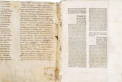 1D: Alberto da Padova. Expositio evangeliorum dominica