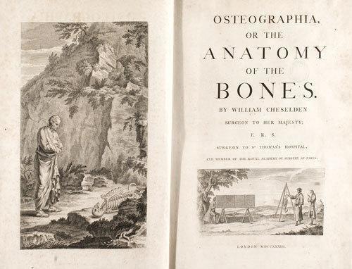 248D: Anatomia - Cheselden, William. Osteographia, or t