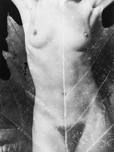 218: Ermete Marzoni Untitled (nudes), ca. 1970
