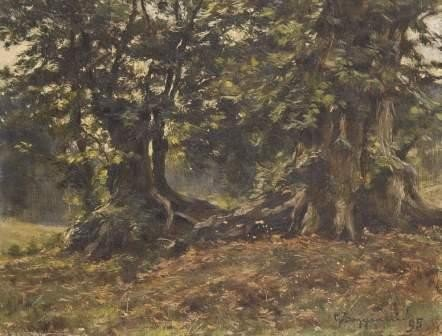 22: Guido Boggiani (1861-1902)  Alberi nel bosco