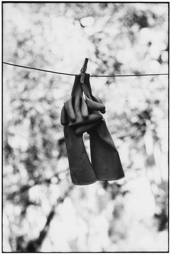 305: Elliott Erwitt (b. 1928) Sicily, Italy, 1965