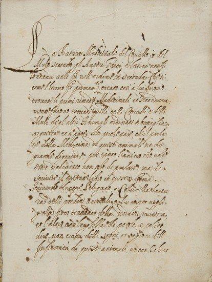 15: Equitazione e Mascalcia - Rossi Lorenzo romano. [D