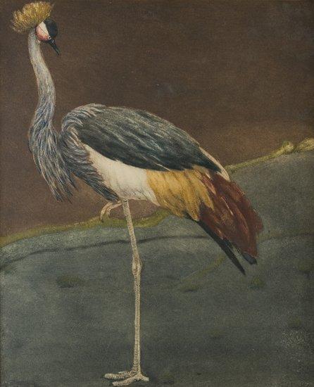 23: Romeo Costetti (Reggio Emilia 1871 - 1957)  'Gru P