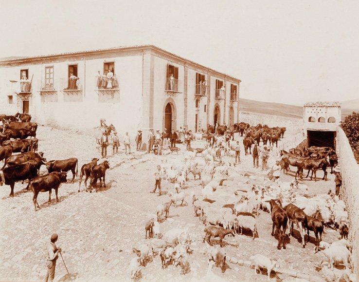 Eugenio Interguglielmi (1850-1911) Sicily, ca. 1880