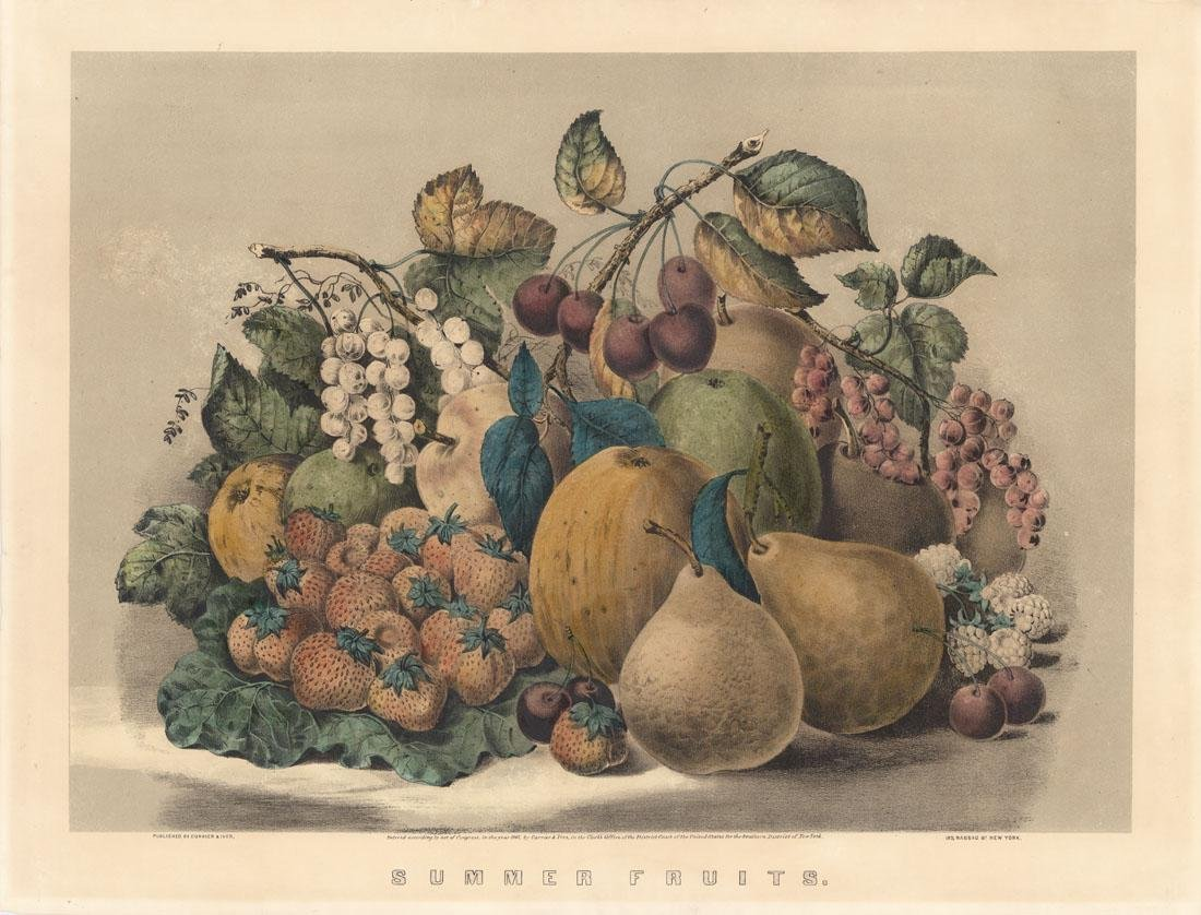 Currier & Ives, Summer Fruits, Lithograph