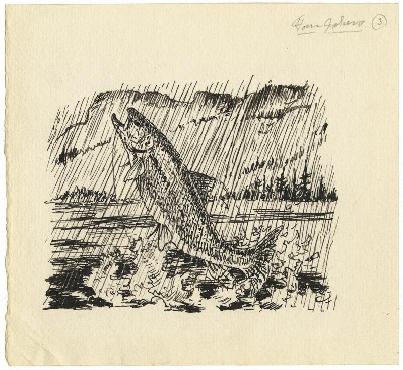 William Schaldach, Ink drawing
