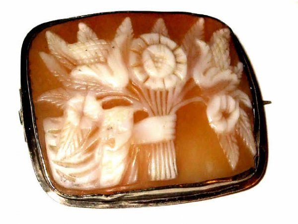 9: Fine Shell Cameo Rectangle Brooch Pin