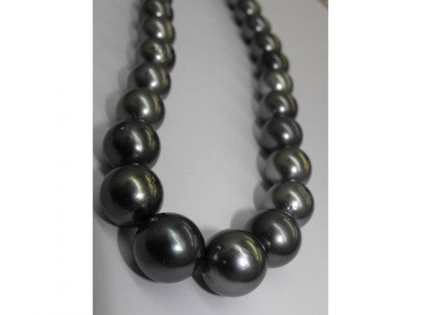 5009: Excellent Sea Pearl Necklace 35 Count  28.5k