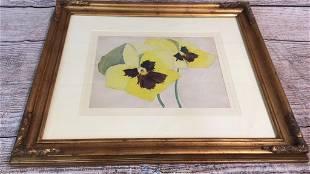 Gouache and Pencil Flower Study