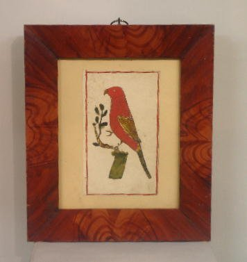 329: WATERCOLOR ON PAPER. Parrot in strong red with gol