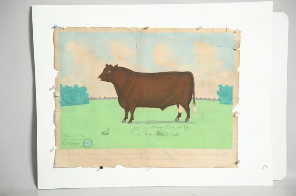 24: PORTRAIT OF A COW BY HENRY DOUSA.