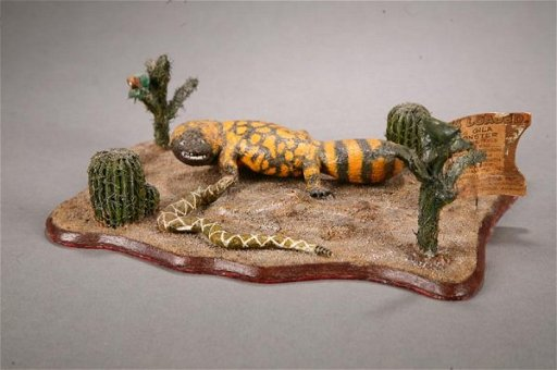 507: DESERT DIORAMA BY CARL CHRISTIANSEN (NEBRASKA, D