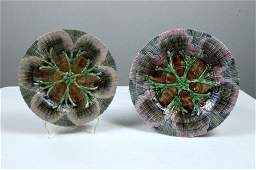 Pair of Etruscan Majolica Shell and Seaweed Plates