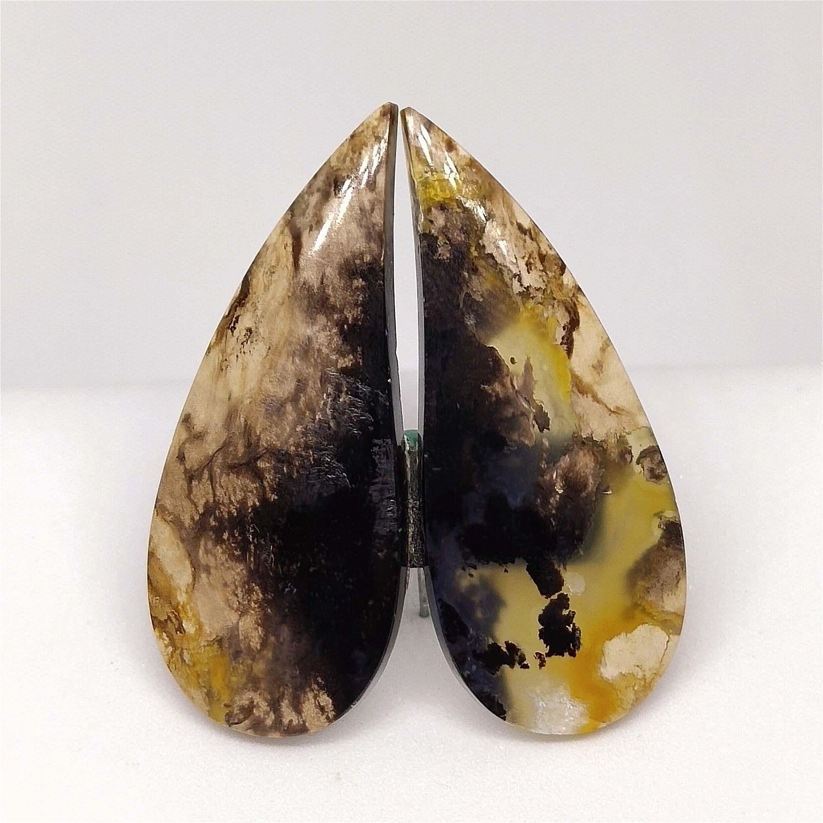 15.35 ct  Natural Palm Root Fossil Pair