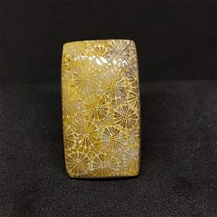 28.50 ct Natural Fossil Coral