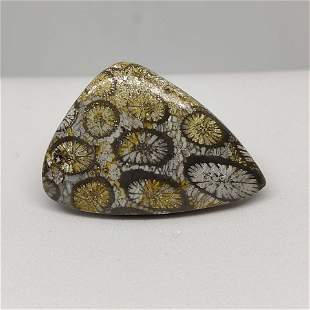 27.90 ct  Natural Gray Fossil Coral