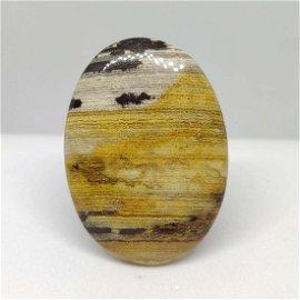 46.65ct Rare Natural Wood Jasper