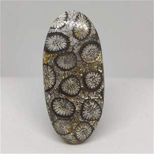 32.00 ct Natural Grey Fossil Coral
