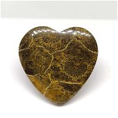 26.15 ct Top Grade Natural Spider Web Fossil Coral