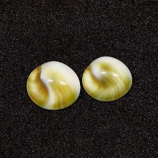7.90 ct Natural Shiva Eye Shell Earrings Pair