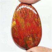 54.50 ct Natural Red Dinosaur Bone Jasper