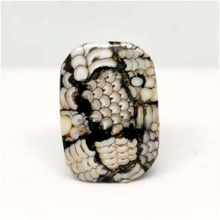 14.45 ct Very Rare Natural Snake Skin Fossil