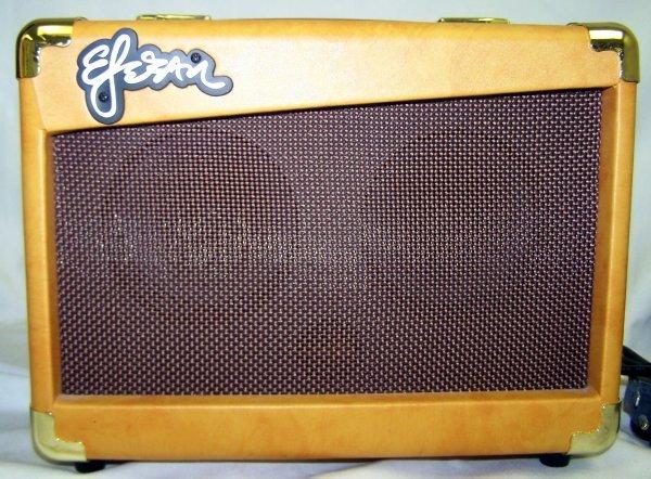 187: Esteban's Granada Classical Guitar, Model G-100 - 4
