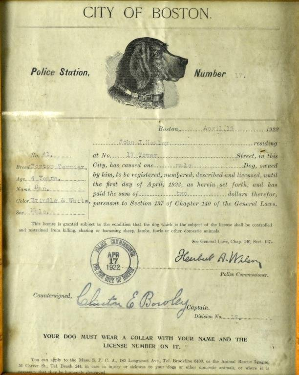 (4) 1922 City Of Boston Dog License, Engravings, Poster - 4