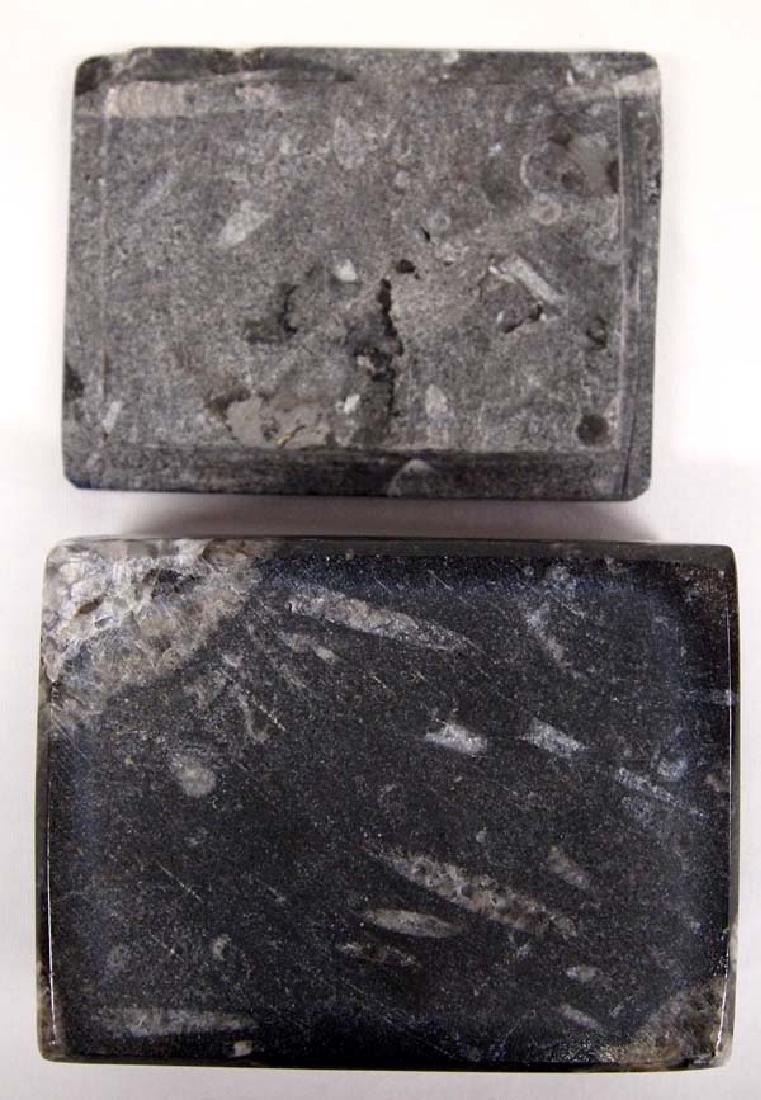 Orthoceras Fossil Lidded Trinket Box - 4