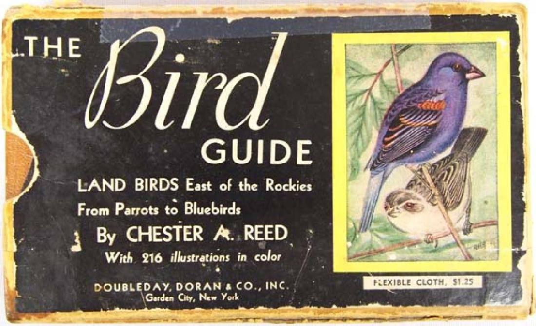 1909 Bird Guide on Land Birds East of the Rockies