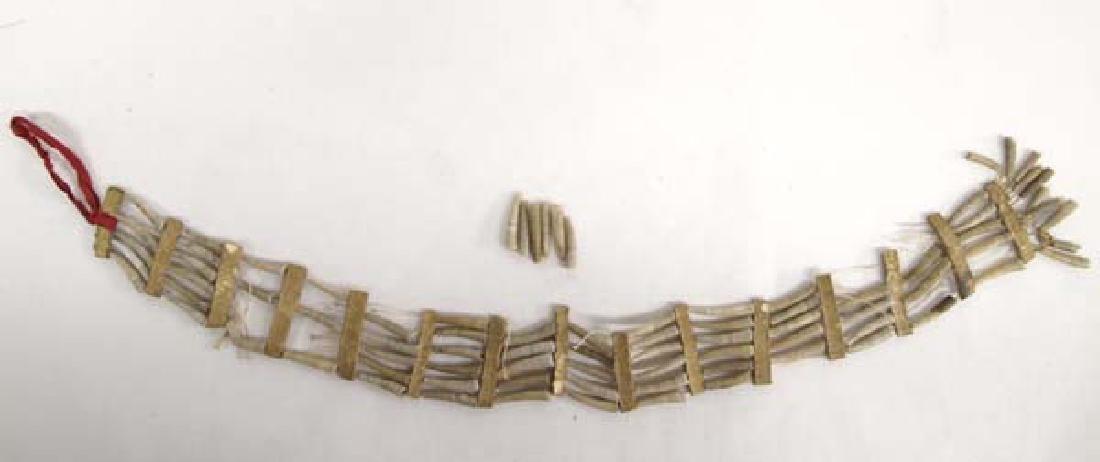 Antique Plains Indian Dentalium Choker