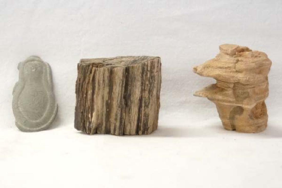 Petrified Wood & Rock Specimens 3in SH $10