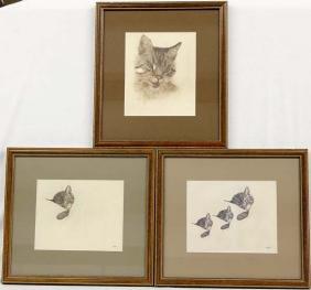 3 Framed Chessie Cat Prints