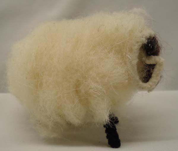Wool Sheep From Ireland