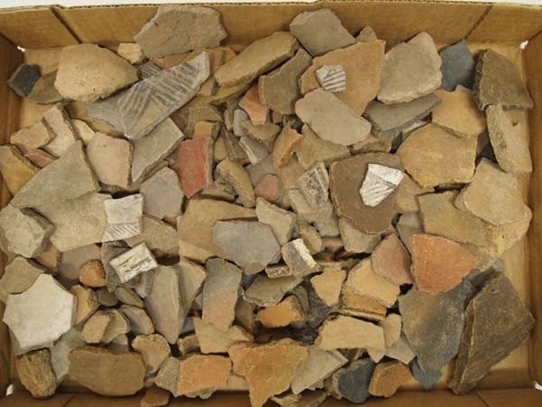 Native American Indian Pottery Sherds