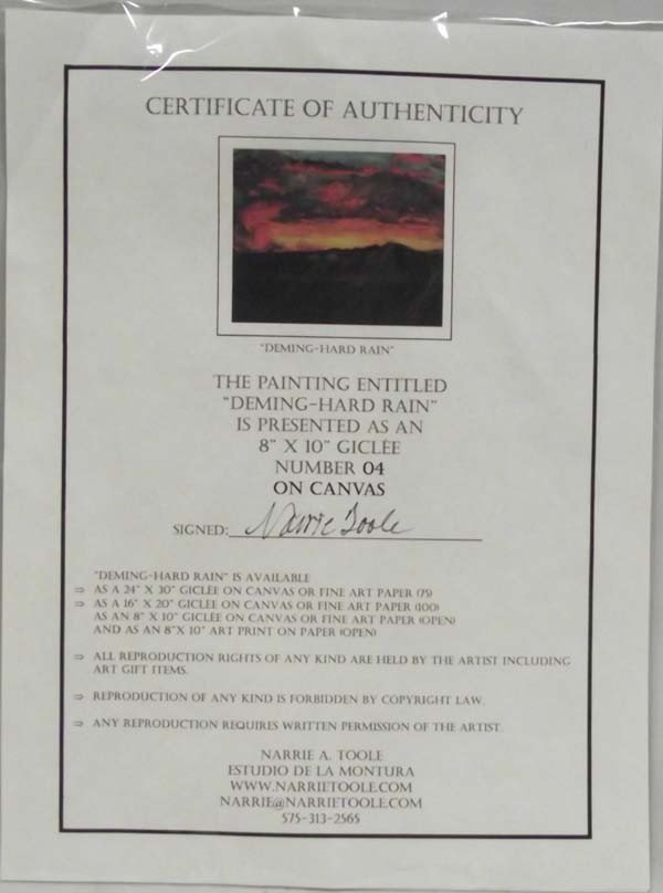 Framed Giclee ''Deming-Hard Rain'' - Narrie Toole - 4