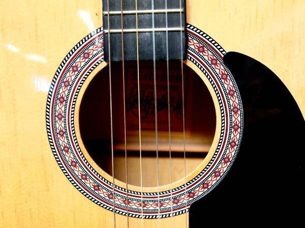 Esteban Acoustic Guitar and Proel Guitar Stand - 2