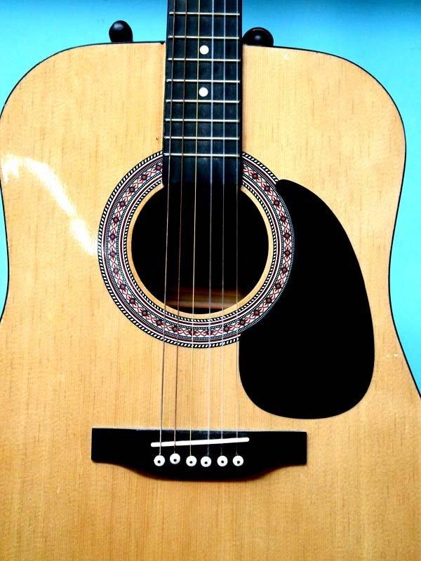 Esteban Acoustic Guitar and Proel Guitar Stand - 3