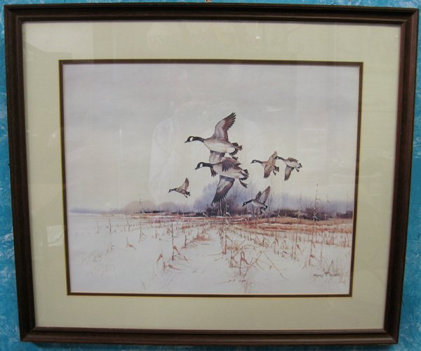 Framed Wildlife Print by Gregory F. Messier