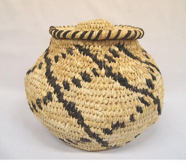 Tohono O'odham Lidded Bear Grass and Yucca Basket