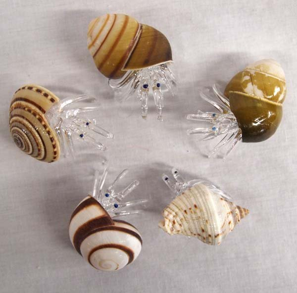 5 Hand Blown Glass Crabs in Sea Shells