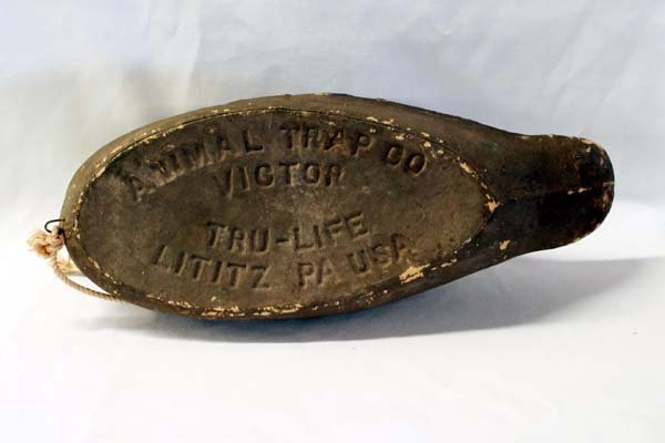 Vintage Victor Tru-Life Trap Co. Duck Decoy - 2