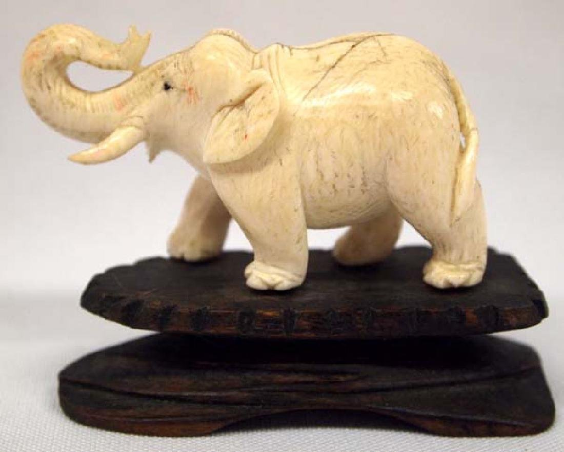 Carved Ivory Elephant on Wood Base
